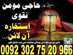Spirtual Scholor & Astrologer Naqvi Sahib