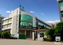Professional led linear light manufacturer-OKT Lighting