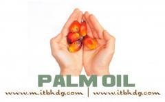 FDA Registration  Palm Oil