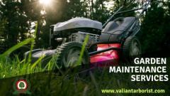 Garden Maintenance Services in Essex  Valiant Arborist