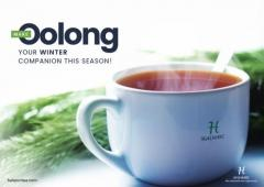 Oolong Tea Bags UK The Black Dragon Tea  Halmari Tea