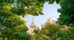 Cheap Holidays to Madrid  Package Holidays to Seville