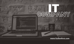 Top IT & Software Company in India