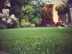 Artificial Grass Installation Service