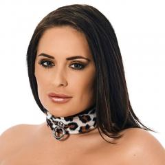 Animal Print Leather Collar  All Night Lovers