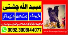 Marry your love with Manpasand shadi
