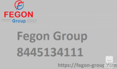 Fegon Group  844-513-4111  Best Network Security