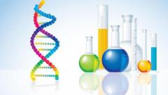 Get Online Biochemical Engineering Assignment Help