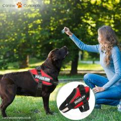 Julius K9 IDC Dog Harness