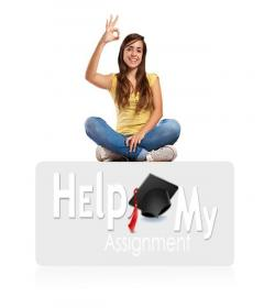 Assignment Help Can Help You With Your Assignments