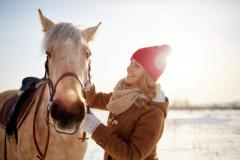 5 Horse Care Tips & Tricks For Equestrian