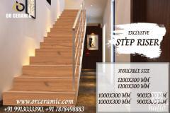 Color Step Riser - Manufacturer of Stair Riser & Floor