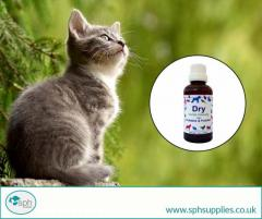 Best Vitamins and Supplements for Cats  SPH Supplies