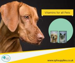 Essential Vitamins and Supplements for Pets  SPH Supply