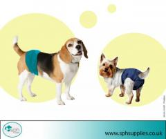 Buy the Best Quality Diapers For Dogs  SPH Supplies