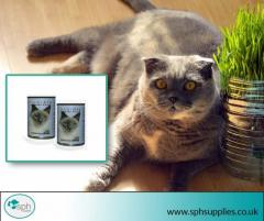 Buy the Best Vitamins and Supplements for Your Cat