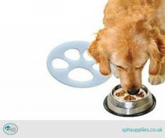 Best Food Bowl for Your Dog-SPH Supplies
