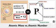 What is Atomic Mass Number  Teacherlookup.com