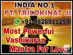 vashikaran mantra hindi 91-9828911259