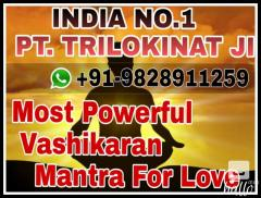 powerful vashikaran mantra for love spell 91-982891125