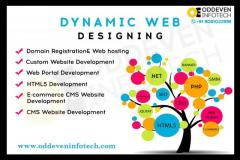 Looking For Web Design & Development Company
