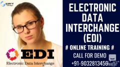 Electronic Data Interchange Online Training