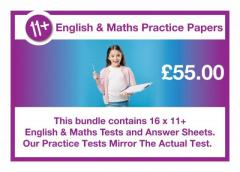 11 plus practice papers from schooltests.org