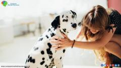 Chaos  Your Pet Cover Do Compare Pet Insurance In CMI