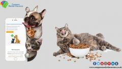 Find Why Pet Plan Is Essential To Safeguard Your Pet