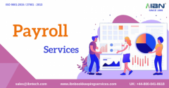 payroll processing services for small business-IBN