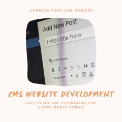Cms Website Development - V1 Technologies