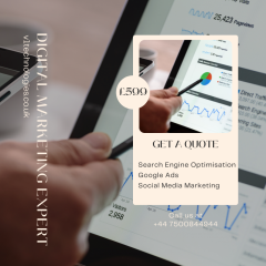 Grab The Best Digital Marketing Expert - V1 Tech