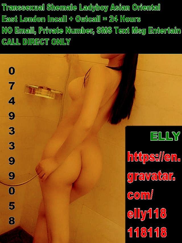 Fabulous Asian Orient Transsexual Ladyboy East London 3 Image
