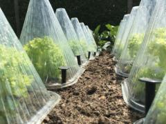 Quality Garden Netting & Frost Protection Products