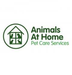 Animals At Home North Surrey