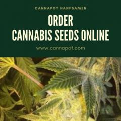 Planning to order cannabis seeds online