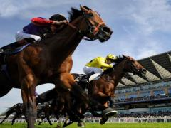 Betting Tips for Horse Racing in UK Call 07926250110