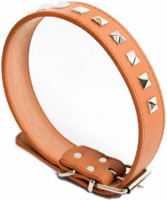 Buy Hotstar Products Leather Dog Collar Online