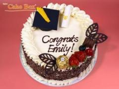 Birthday Celebration Cakes Online