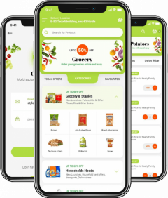 Start Grocery Delivery Business With Bigbasket C