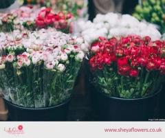 Avail Cheap Fresh Flowers in London