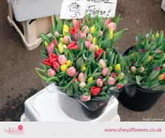 GET FINE FLOWERS FOR BOUQUETS IN LONDON