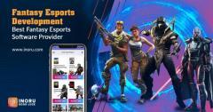 Fantasy Esports Software Development
