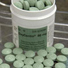 Order Oxycodone,xanax,percocet,adderall,ambien,subutex