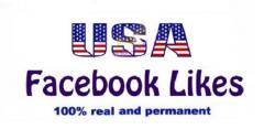 Buy 100 Usa Facebook Likes At Cheap Price