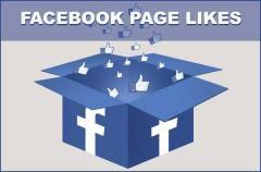 Buy Real Facebook Likes At Cheap Price