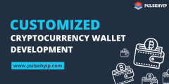 Benefits Of Custom Cryptocurrency Wallet Develop
