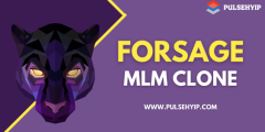 Pulsehyip - Forsage MLM Clone at 48Hours