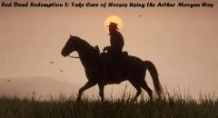 Red Dead Redemption 2 Take Care Of Horses Using