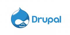 Best Drupal Web Development Company In Uk